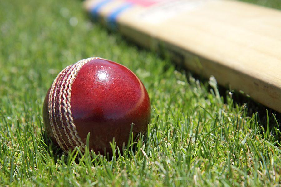20/20 cricket trading strategies